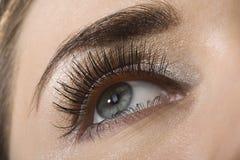 Beautiful eye. Beautiful woman`s open eye. Pink and golden eye-shadows Royalty Free Stock Photos