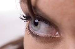Beautiful eye Royalty Free Stock Photos