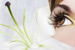 Beautiful Eye Stock Photography