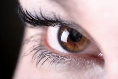 The beautiful eye of the brunette Stock Photo