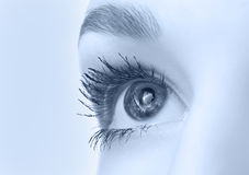 Beautiful eye closeup Royalty Free Stock Photo