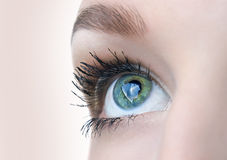 Beautiful eye closeup Royalty Free Stock Photos