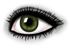 Beautiful eye. Beautiful green eye on a white background vector illustration