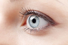 Beautiful eye Royalty Free Stock Images