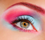 Beautiful eye make-up Royalty Free Stock Image
