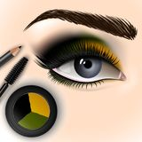 Beautiful eye with makeup accessories. Brush, eyeliner and eye shadow. Vector illustration Stock Image