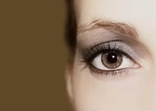 Eye with makeup Royalty Free Stock Images
