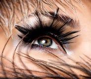 Beautiful Eye Makeup. CLoseup female eye with beautiful fashion makeup with long false eyelashe stock photos