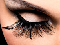 Beautiful Eye Makeup. With long false eyelashes. Holiday visage Royalty Free Stock Images