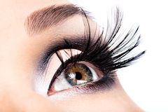 Beautiful Eye Makeup. Wellness, cosmetics and make-up. Holiday visage Stock Image