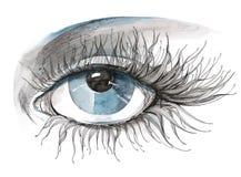 Beautiful eye Royalty Free Stock Image