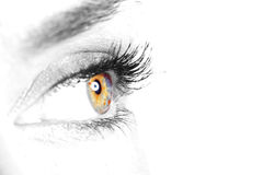 Beautiful Eye of Woman Stock Photos