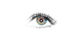 Beautiful Eye of Woman Stock Image