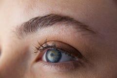 Beautiful eye of a woman stock image