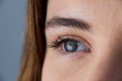 Beautiful eye of a woman royalty free stock image