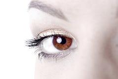 Beautiful eyes Royalty Free Stock Photos