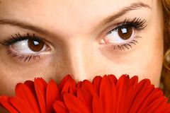 Beautiful eyes Royalty Free Stock Images