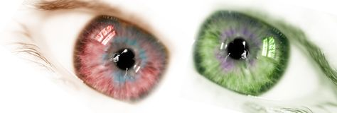 Beautiful eyes. Red eye and green eye...a happy family Royalty Free Stock Photography