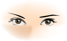 Beautiful Eyes. A beautiful female eyes staring mysteriously Royalty Free Stock Image