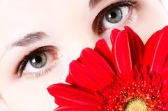Beautiful eyes Royalty Free Stock Image