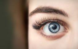 Beautiful eyes girl close-up royalty free stock photo