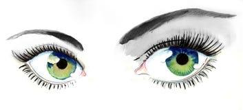 Beautiful eyes. Watercolor image of a beautiful women eyes vector illustration