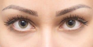 beautiful eyes woman Royaltyfri Bild