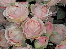 Pink rose blossoms of fabric flowers royalty free stock photos