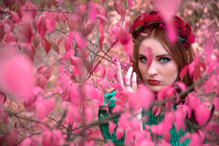 A beautiful and fabulous girl in a pink foliage with red wreath Stock Photography