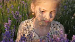 Beautiful face small girl among the flowers stock footage