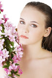 Beautiful face of spa woman with healthy clean skin. Royalty Free Stock Photos