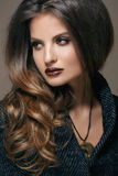 Beautiful Face of Young Woman with professional make up, dark red lips Royalty Free Stock Image