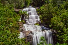 Beautiful Fainter Falls in native Australian Forest. Kiewa Valley, Victoria, Australia. Royalty Free Stock Image