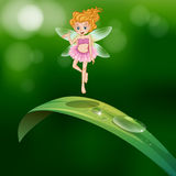 A beautiful fairy above an elongated green leaf stock illustration