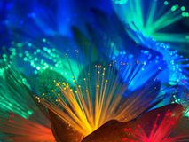 Beautiful fairy glowing flowers. Abstract color background of fairytale glowing flowers macro Royalty Free Stock Image