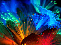 Beautiful fairy glowing flowers. Abstract color background of fairytale glowing flowers macro Stock Image