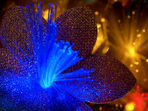 Beautiful fairy glowing flowers background. Abstract color background of fairytale glowing flowers macro Stock Images