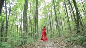 Beautiful Fairy Tale Girl Running In Woods stock footage