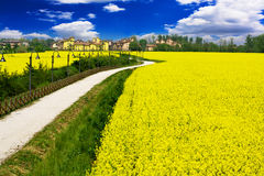 Beautiful Fairytale country and yellow rape flower Royalty Free Stock Photos