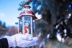 Beautiful fairytale lantern hanging on fir branch in forest Stock Photo