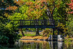 Beautiful fall afternoon. Royalty Free Stock Photo