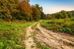 Beautiful fall autumn forest landscape old road Royalty Free Stock Photography