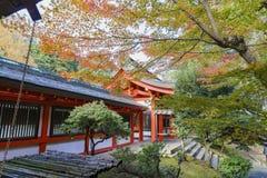 Beautiful Fall Color And Omi Jingu