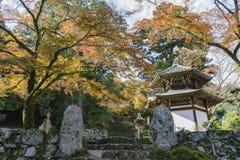 Beautiful fall color of Hiyoshi Taisha. At Otsu, Shiga, Japan Stock Photo