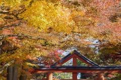 Beautiful fall color of Hiyoshi Taisha. At Otsu, Shiga, Japan Stock Photography