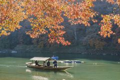 Beautiful fall color and Katsura River with boat Royalty Free Stock Image
