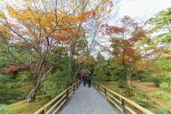 Beautiful fall color of Kinkaku-ji. Kyoto, Japan Royalty Free Stock Image