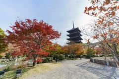 Beautiful fall color of To-ji Royalty Free Stock Photo