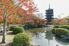Beautiful fall color of To-ji Royalty Free Stock Image