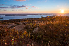 Beautiful fall colors of Acadia, Maine. Beautiful fall colors of Acadia National Park in Maine USA royalty free stock image